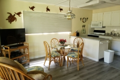 Dining area and kitchen view