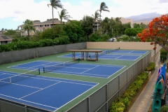 Four championship size tennis courts