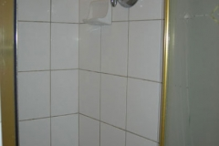 All new shower, custom etched window, tiled vanity top and floor