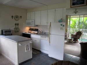 Upgraded Condo Kitchen even includes filtered drinking water